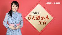 雲文子2019流年運程生肖排行榜-小人篇