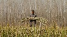 DCM Shriram: Weak sugar prices a drag, remain cautious