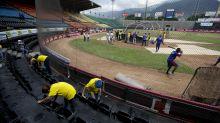 Venezuelan fans endure sacrifices to 'Play Ball' amid crisis