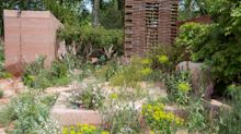 Wild, untidy gardens better for mental health, designer claims at Chelsea Flower Show