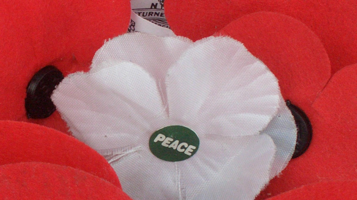 Remembrance Day 2020: Why do some people wear a white poppy?