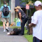 Police make multiple arrests after 76 people overdose on K2 at Connecticut park