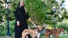 Muslim woman wears only hijab at National Dog Show as she introduces new breed