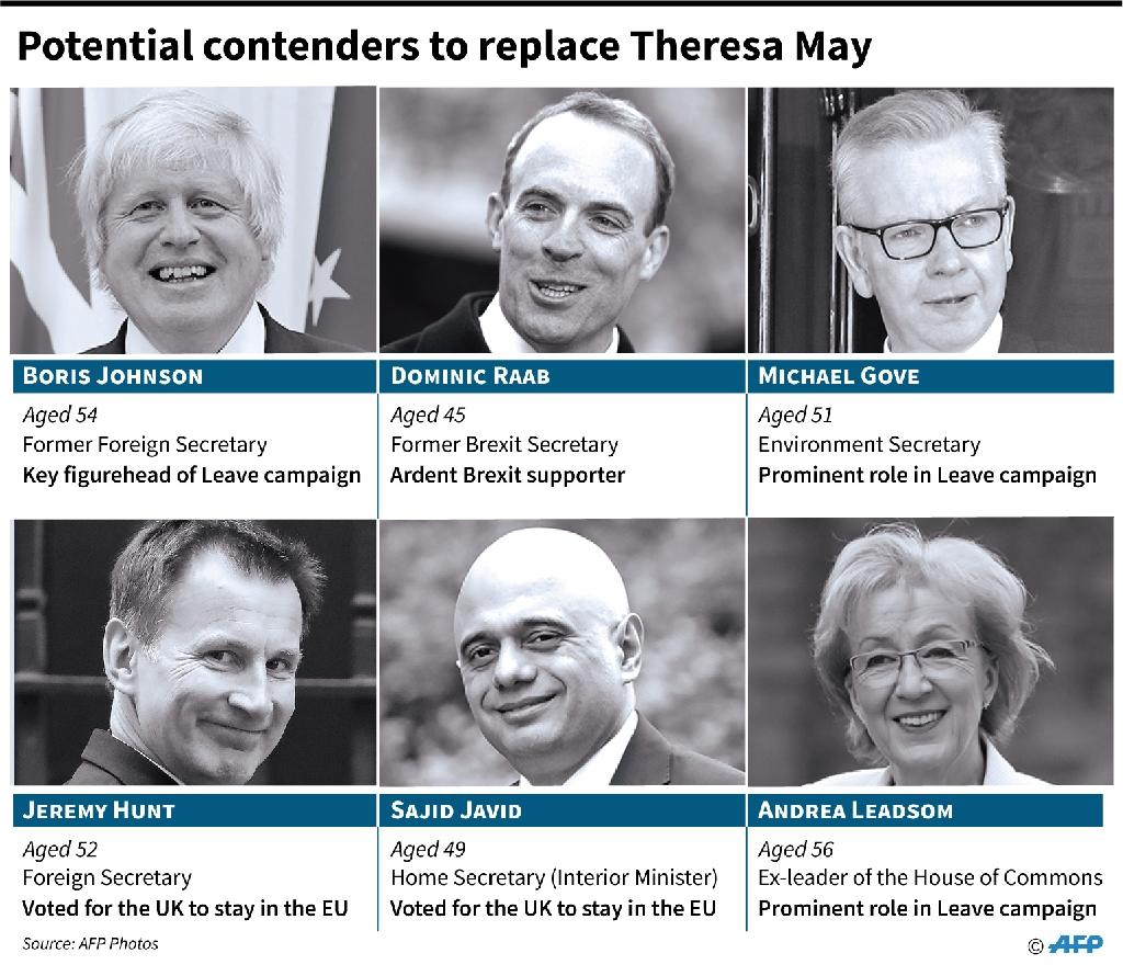 Potential candidates to succeed Theresa May