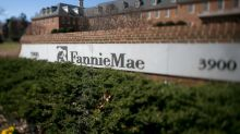 Through Fannie Mae, US taxpayers provide backing for some rental home giants
