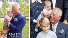 Prince Louis grabs grandpa Charles' face in new photos