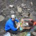 Denali Dinos: Ancient Bones Are First of Their Kind in National Park