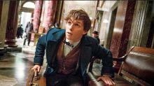 'Fantastic Beasts 2' Posts Casting Call For Five Teen Roles, Including Newt Scamander