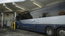 Greyhound will stop allowing immigration checks on buses