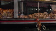 China detecta el coronavirus en pollo de Brasil y gambas de Ecuador