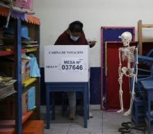 Peru: No serious irregularities in presidential run-off, say observers
