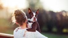 Du liebst Hunde? Das steckt in deinen Genen