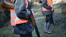 Chaque année, il y a une centaine d'accidents de chasse en France