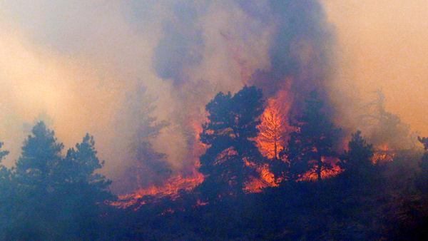 Early wildfire chars up to 1,000 acres in N Colo.