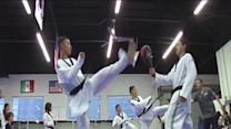 Tae Kwon Do Tigers