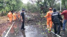Cyclone Nisarga Makes Landfall; Flights Halted in Mumbai Till 7 pm