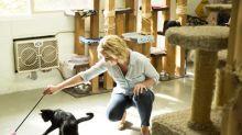 Cat's Pride® Announces Litter For Good™ Program