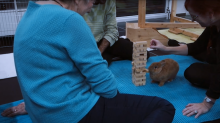 Rabbit successfully plays Jenga with humans