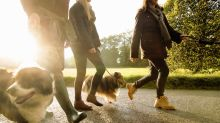 Walking outside can help you get along with your family, study finds