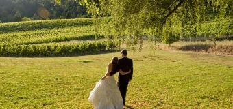 Websites snub plantations as 'romantic places to marry'