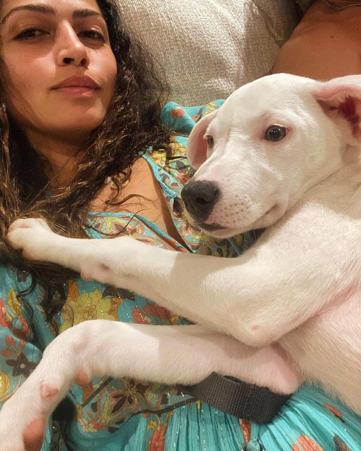 Camila Alves McConaughey Shows Off New Adopted Family Dog: 'What Was I Thinking!'