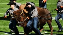 Colorado Football lands Iowa OL transfer