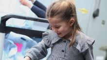 Princess Charlotte wears Zara houndstooth print dress for fifth birthday pictures