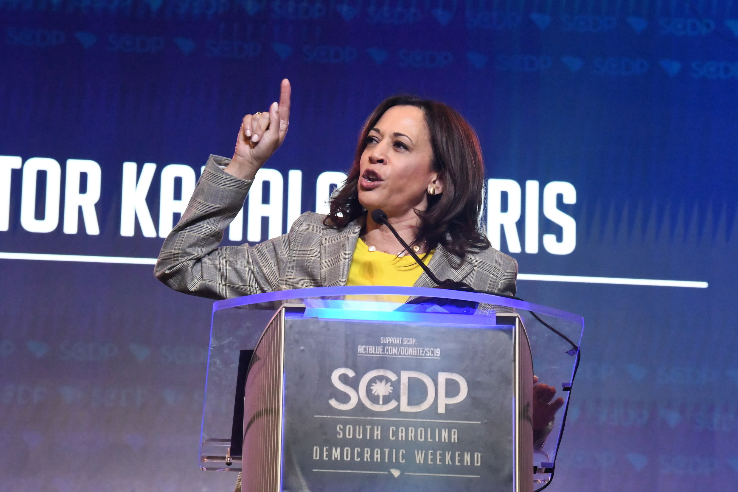 Best Food Dehydrator 2020 2020 Democrats strongly defend abortion rights at forum