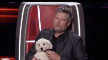 A dog in this fight: Blake Shelton tries to bribe 'Voice' contestant with puppy