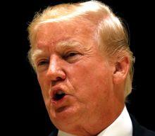Trump Blames Democrats For Shutdown Despite GOP Control Of Congress