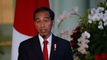Indonesia president approves two-year extension of forest moratorium