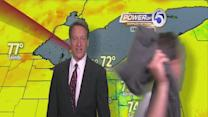'Streaker' runs through Mark Johnson's forecast
