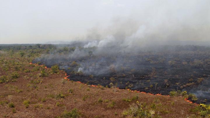 アマゾンで記録的な火災の数