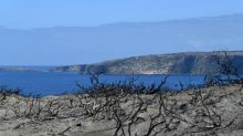 Extra cash for Kangaroo Island desal plant