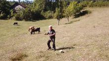 Granjero aterrorizado al ver un drone por primera vez