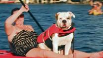 Raw: Doggies Paddling for a Good Cause