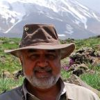 Iran Sentences a U.S. Citizen and Seven Other Environmentalists to Prison