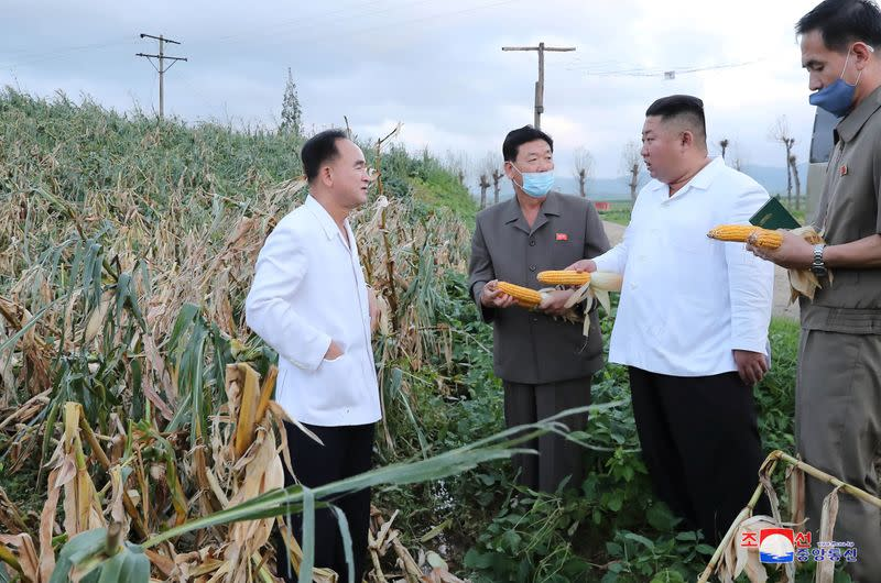 North Korean leader Kim Jong Un inspects the typhoon-damaged area in South Hwanghae Province