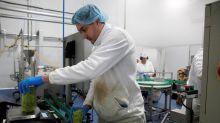 La economía verde ha generado 500.000 empleos, que se triplicarán en 10 años