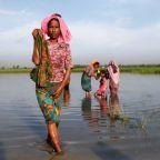 U.N. urges Bangladesh to move Rohingya refugees stranded at border