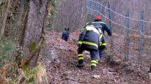 Udine, ritrovate le gemelline scomparse: erano in un bosco con il loro cane