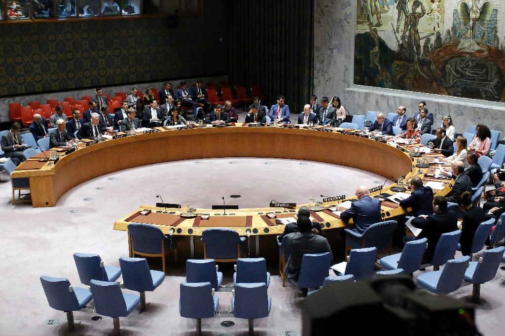 The UN Security Council unanimously demanded that Pyongyang halt its missile program (AFP Photo/KENA BETANCUR)