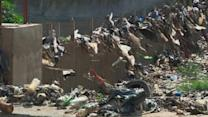 Africa takes a lead on plastic bags