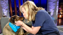 Chelsea Handler's Beloved Dog Tammy Dies: 'We Will Miss You Dearly'