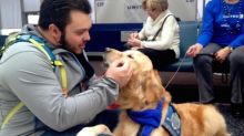 United Lets the Dogs Out to Relieve Travel Stress at Airports