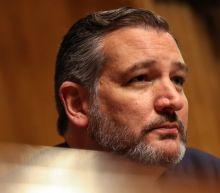 Cruz Claims Schiff's Opening Argument Makes Hunter Biden's Testimony 'Critical'
