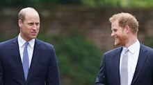 Royal cousins could be key to ending William and Harry 'feud'