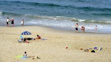 La préservation des mers et des océans fait son entrée dans la Constitution