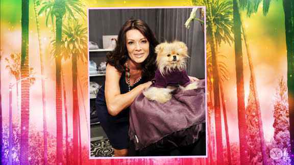 Celebrity Pet Project: Furry and Famous: Episode 8 Shopping for your Hollywood Pet