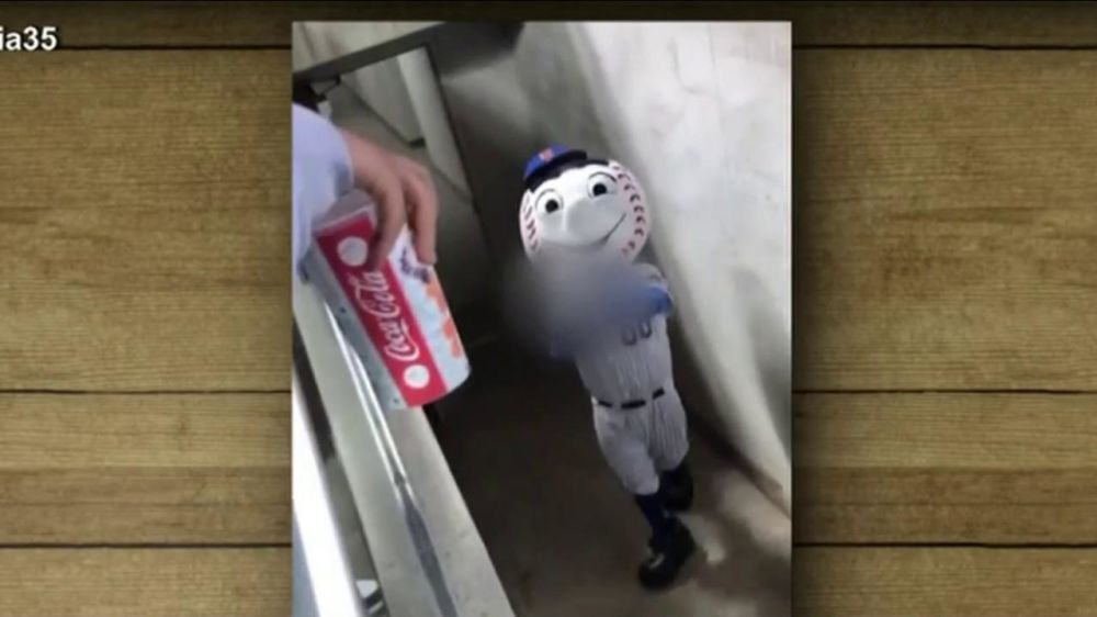 Mr. Met gave a fan the finger, which is totally ridiculous. (NBC)